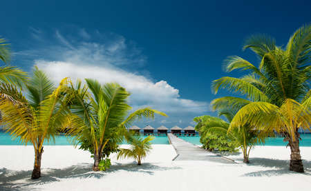 Tropical Beach with water bungalows in the ocean