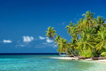 beautiful tropical beach on the maldives 版權商用圖片