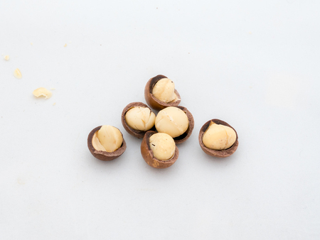macadamia nuts fruits with shell on white background