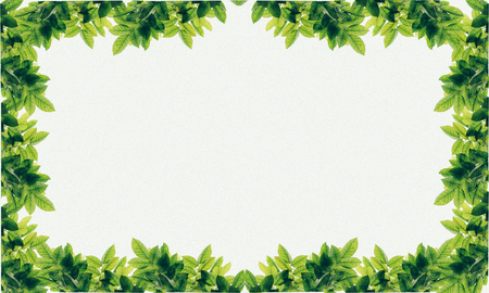 leafs frame abstract background isolated on white