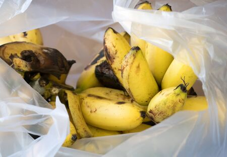 Banana fruits in plastic bag