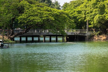 beautiful cement Bridge in Public Park over water with tree.
