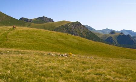 plateau: plateau,moutain