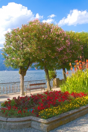 dinghies: Flowers and trees on the lake