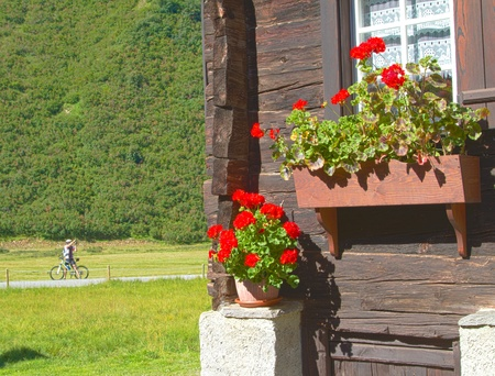 refuge: Flowerpot of an alpine hut Stock Photo
