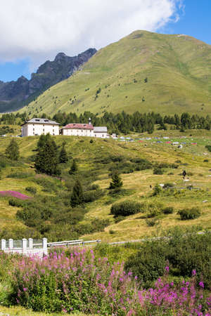 Alpine panorama in summer time, sunny day on a mountain pass 版權商用圖片