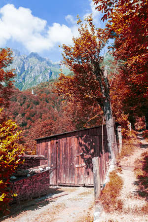Mountain barn in a forest in autumn at the sun