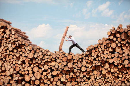 hardworking: business vision -hardworking  businessman  on top of large pile of cut wooden logs