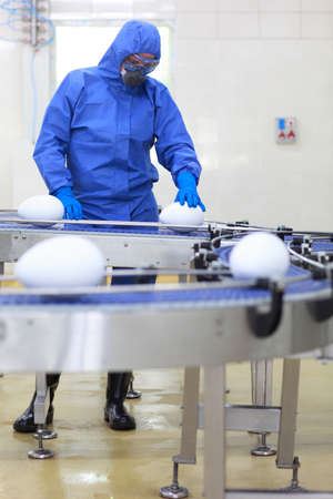 genetically engineered: biotechnology engineer at conveyor belt in factory