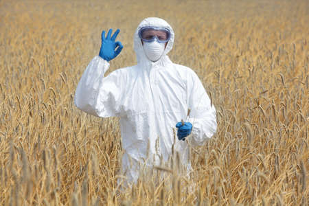 scientific farming: success - agricultural engineer with ok gesture on field of crops Stock Photo