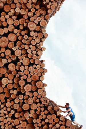idealistic:  Young man climbing the large pile of cut wooden logs  Young man climbing the large pile of cut wooden logs