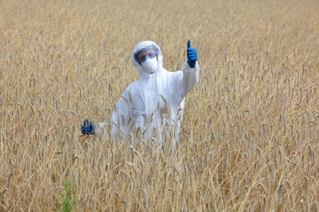 scientific farming: success - agricultural engineer with thumb up gesture on field of crops