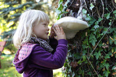 Little caucasian girl examining large Tinder fungus on tree bark - early education photo