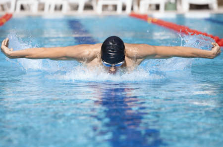 swimming animal:  dynamic and fit swimmer in cap breathing performing the butterfly stroke  in swimming pool