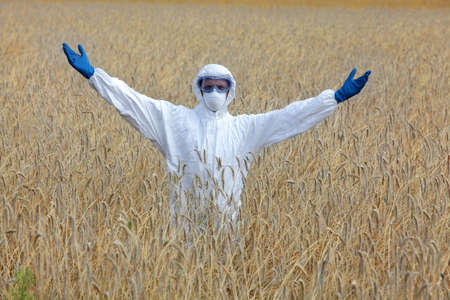 scientific farming: gmo ready  agricultural engineer on field of field of rye