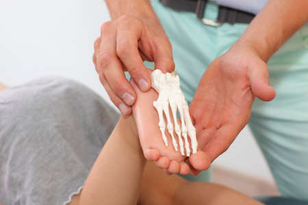orthopedics: anatomy lesson on child  comparison of child foot with an anatomic model Stock Photo
