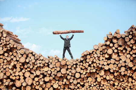 hardworking: Hardworking Business Man on top of large pile of logs   lifting  heavy log - front view
