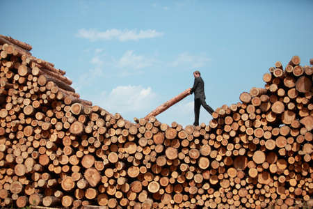 hardworking: Hardworking Business Man on top of large pile of logs  lifting  heavy log