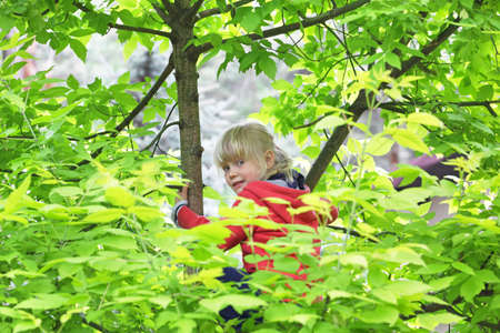 active childhood - caucasian blonde little girl climbing the tree