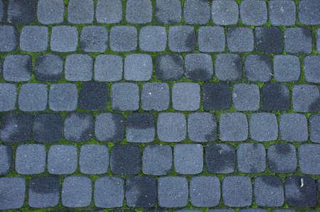 mosaic floor: Mosaic Stone floor with green plant Stock Photo