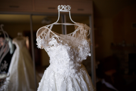 elegant wedding dress with veil the bride in the room