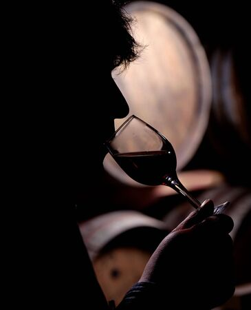 taster: Silhouette of a wine taster, against wine barrels Stock Photo