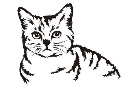 half body: half body design vector cat