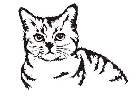 pet cat: half body design vector cat
