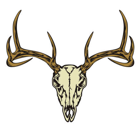 skull deer head abstract vector design