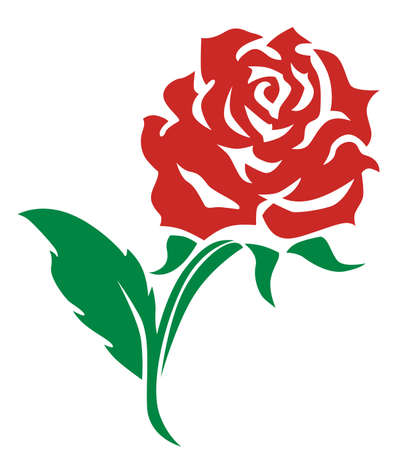 red rose vector design