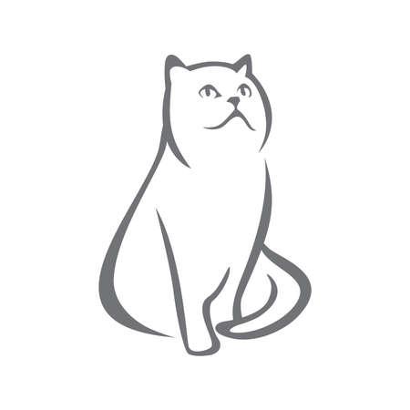 Resumen de gato persa