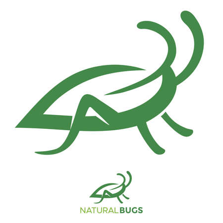 Bug leaf abstract