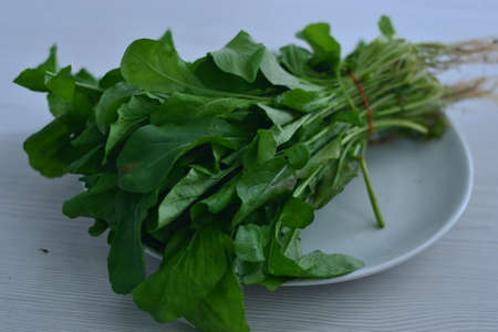 Parsley, rocket, lettuce, sour grass is important for healthy nutrition