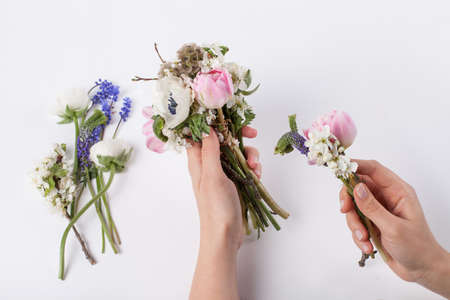buttercups: Florist is making a beautifull spring bouquet from pink tulips, violet grape hyacinths, white anemones, violet veronica and white buttercups on white background