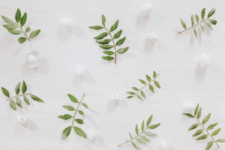 Fresh green leaves and little eggs  on white wooden background