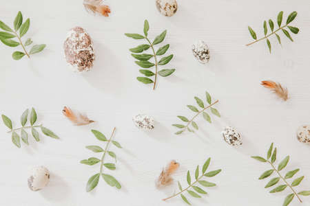 Easter pattern from green leaves and little eggs on white wooden background with feathers