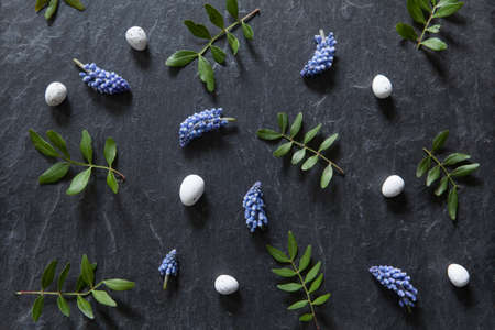 Easter flower pattern with grape hyacinths, eggs and green leaves on stone, dark background.