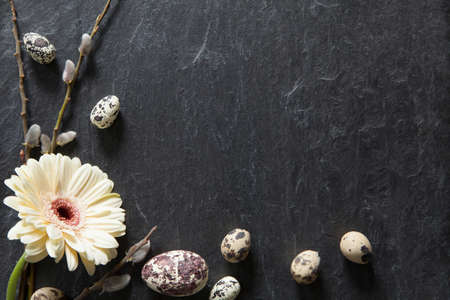 Easter background with dark stone, gerbera flower, fluffy willow and natural eggs Stock fotó