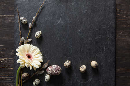 Simple easter decoration with eggs, yellow gerbera flower and fluffy willow on dark stone
