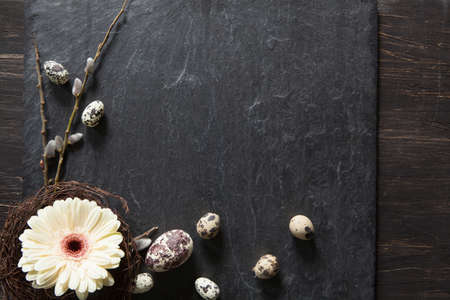 Easter background with dark stone, gerbera flower in a wreath, fluffy willow and natural eggs