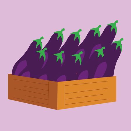 eggplants in a wooden crate. vector illustration