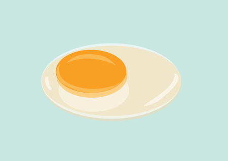 raw egg: Raw Egg with Yolk and Albumen. Vector Illustration