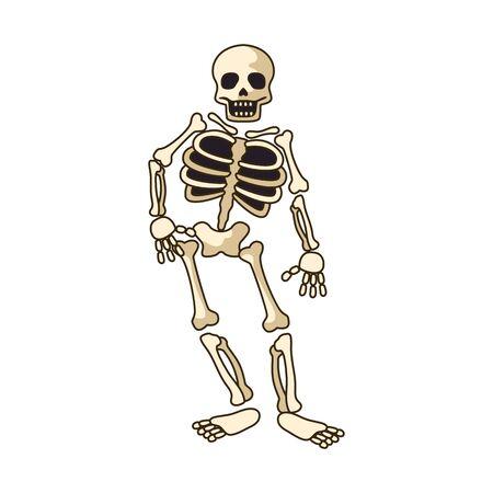 icône de squelette humain isolé sur fond blanc. illustration vectorielle Vecteurs