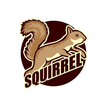 Logotipo de ardilla aislado en la ilustración de vector de fondo blanco