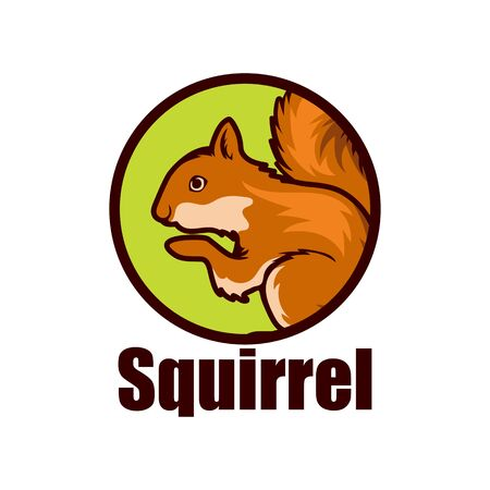 squirrel logo isolated on white background vector illustration