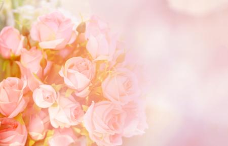 pink rose flower / soft color pink roses flower bouquet on table blur background