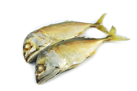 Mackerel fish isolated  steamed mackerel cook fish on white plate isolated on white background - Thai mackerel fish common steamed thai seafood
