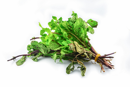 Vegetable withered isolated on white background - Peppermint wilt dried withered