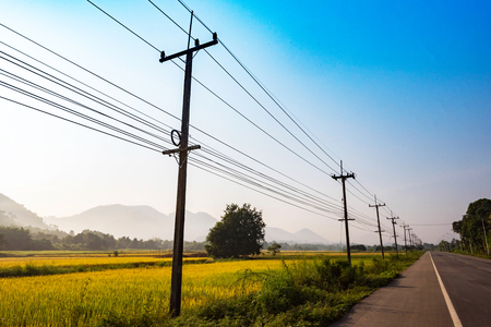 Countryside road  Landscape in the morning on the asphalt road with electric pole and rice field on roadside farm agriculture