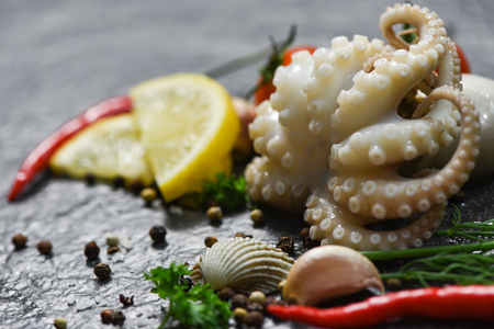 Seafood squid plate ocean gourmet dinner fresh tentacles of octopus with herbs and spices on dark background